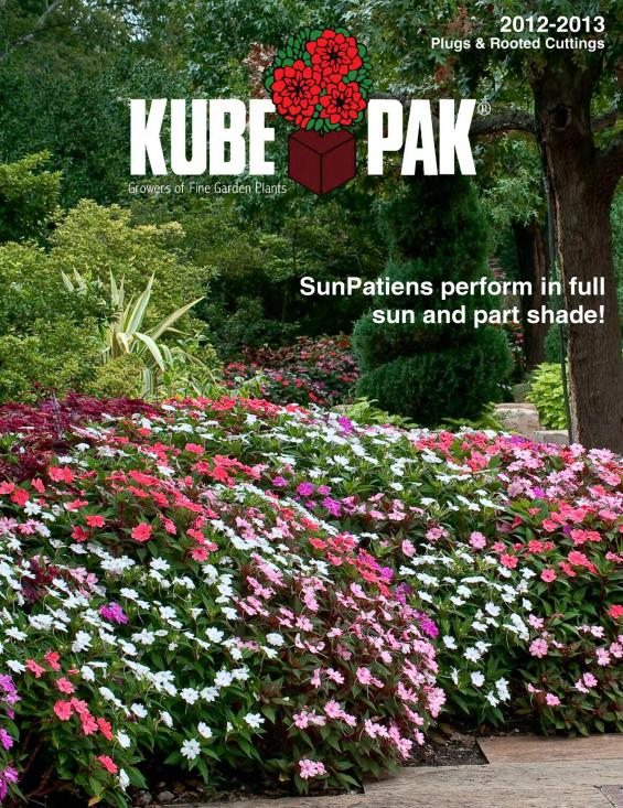 plug_cover_2013