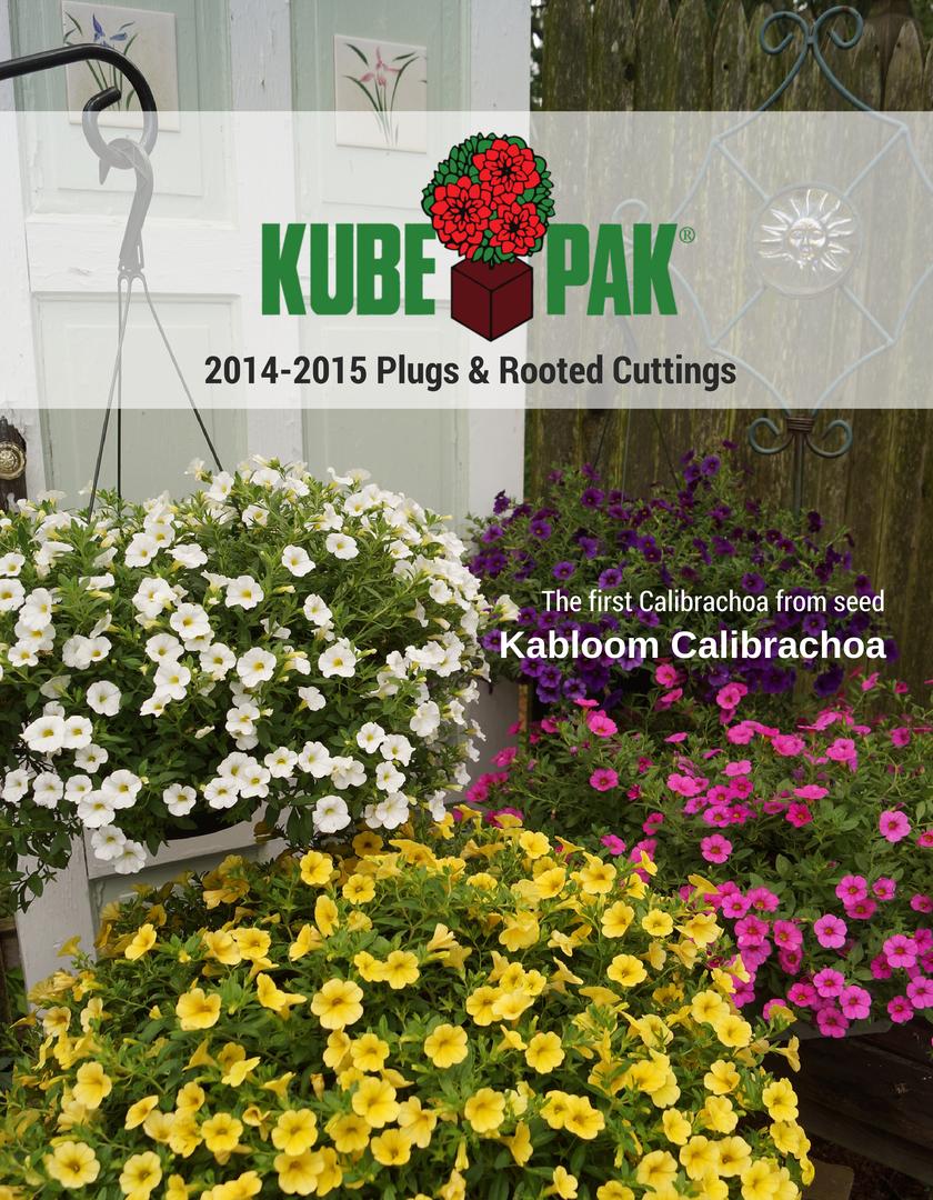 plug_cover_2015